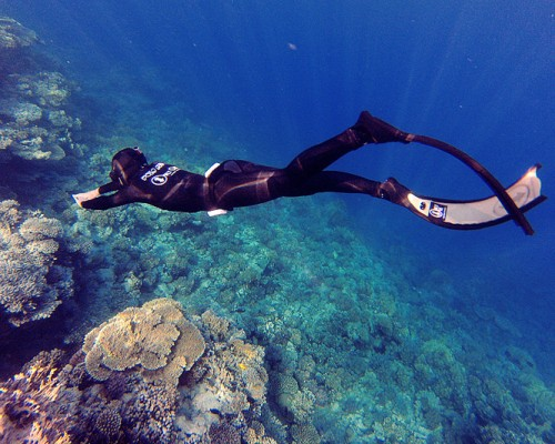 freediving3