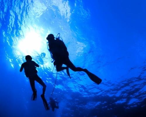 Тем кто еще не решился пойти на курсы обучения дайвингу, не знает стоит ли, или просто слегка побаивается, предлагаем совершить пробное погружение с аквалангом в бассейне.